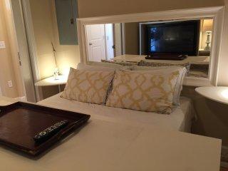 Luxury Rentals High Rise 1 bedroom