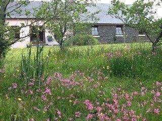 Poulnasherry Cottage   Eircode:V15D761, Kilkee