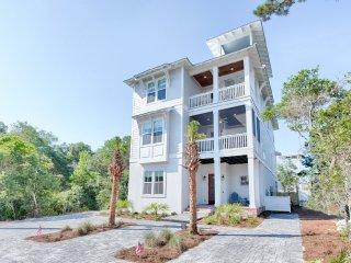 Big Sandy:Brand NEW Luxury Home7/9! Steps to Beach, Santa Rosa Beach