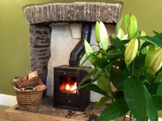 Wood burner with complimentary basket of logs