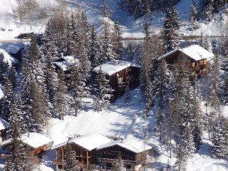 ChaletAppart 10/16 personnes La Plagne a 250m pistes ski