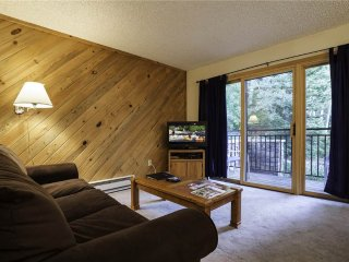 Scandinavian Lodge and Condominiums - SL201, Steamboat Springs