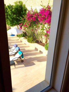 Bougainvillea climbing on all walls. Through a staircase window.