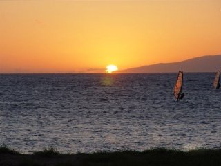 $149 Aug/Sep Special!! 2bdrm/2BA Ocean View, Kihei