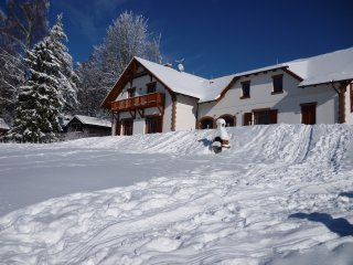 VILLA VICTORIA large family house - Lipno ski & lake area