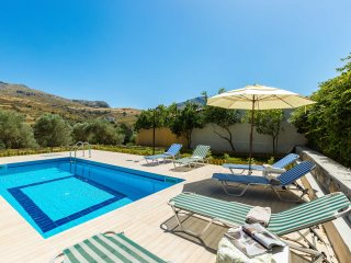 Gorgeous villa with pool & gardens, Agios Ioannis