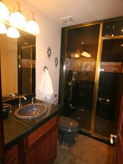 Main bath-Large w/bench  You can really enjoy the steam shower feature in here
