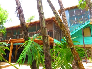Living in the treetop with amazing views, Placencia