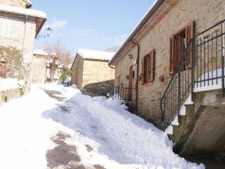 Casa Colonica Toscana - Stone Farmhouse in Tuscany