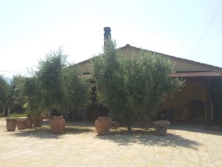 Villa Alexandra 2000m. di giardino a 2 km dal mare