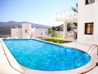 sandra villa with private pool