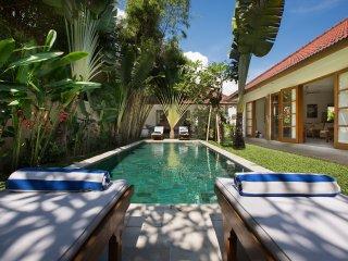 Villa Puri Pura (4 bed, chef, butler, housekeeper), Canggu
