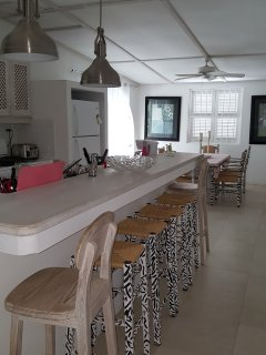 Open plan kitchen dinning