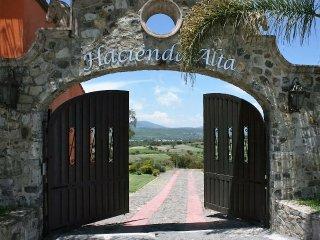 Hacienda Alta 1, Chapala