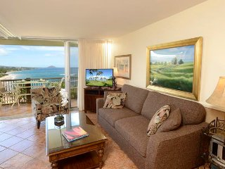 1BD Mana Kai Maui Oceanfront on Best Beach!