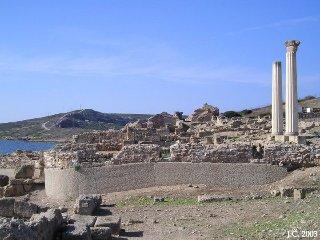 Torre del Pozzo villetta a 100m. dal mare-giardino