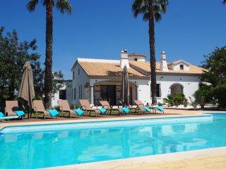 Amazing villa with private pool in Almancil
