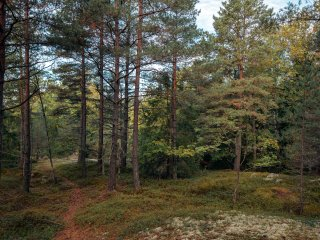 In nature,  only 10 min drive from Stockholm city