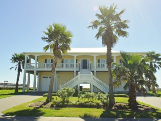 Beachfront Flamingo ~ RA72410, Galveston