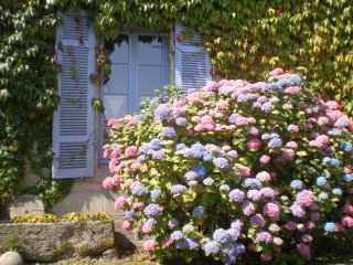 France Holiday rentals in Brittany, Collinee