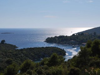 Ferienwohnung Villa Lunaris A4, Maslinica