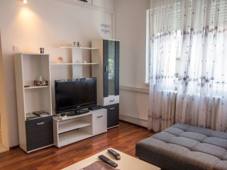 Downtown Apartment ARNICA