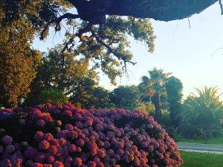 Jardim surpreendente Cottage em Melides - Comporta