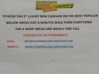 Flamingo land caravan hire 131 willow grove