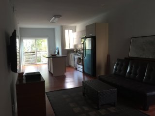 FURNISHED AND REMODELED 1 BED, 1 BATH IN THE HEART OF SOMA, San Francisco