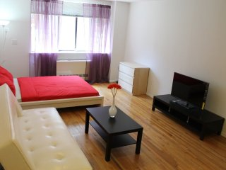 Beautiful Studio Apartment, Long Island City