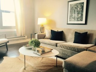 STUNNING 1 BEDROOM CONDO IN CHICAGO, Chicago