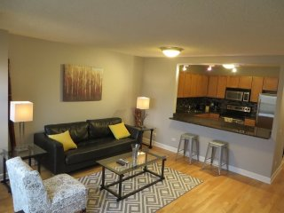 SUPERB AND SPOTLESS FURNISHED 1 BEDROOM 1 BATHROOM CONDOMINIUM, Chicago