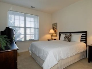 STUNNING AND BRILLIANTLY FURNISHED 1 BEDROOM APARTMENT IN NAPERVILLE, Naperville