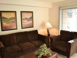 REMARKABLE FURNISHED 2 BATHROOM 2 BEDROOM APARTMENT, Baltimore