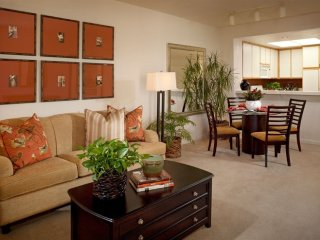 LUXURIOUS 1 BEDROOM 1 BATHROOM FURNISHED APARTMENT, San José