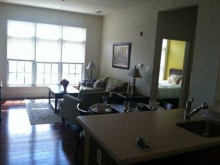 Stunning 2 Bedroom, 2 Bathroom Condo in Baltimore