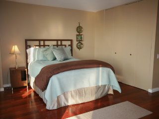 Amazing, Well Lit 1 Bedroom, 1 Bathroom Condo in CHicago, Chicago