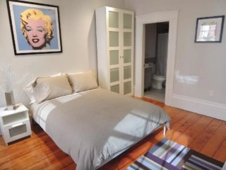 Clean and Fresh Studio Apartment in Boston - Beacon Hill Neighborhood