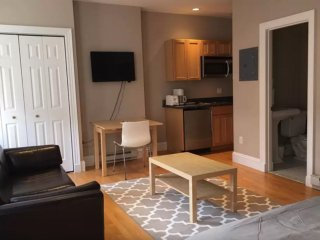 Plesant Studio Apartment in Boston - Fully Furnished