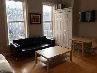 Amazing Studio Apartment in Boston