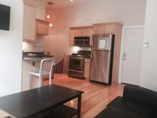 Clean and Lovely 2 bedroom 1 Bathroom Apartment in Boston