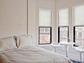 Charming and Vibrant Studio Apartment in Boston