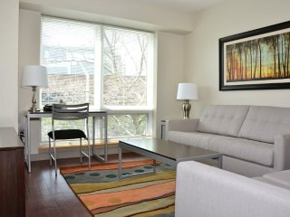 Furnished Apartment at Rogers St & 6th St Cambridge