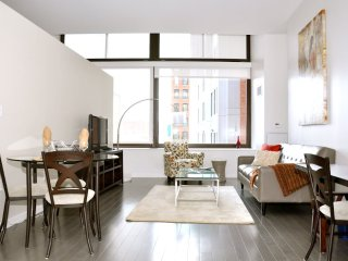 MAGNIFICENT 1 BEDROOM 1 BATHROOM FURNISHED APARTMENT, Boston
