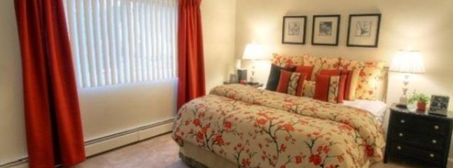 UPSCALE 1 BEDROOM 1 BATHROOM FURNISHED APARTMENT, Nashua