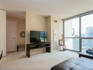 Furnished 1-Bedroom Apartment at East South Water Street & N Westshore Dr Chicago