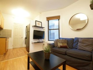 Clean and Amazing 2 Bedroom, 1 Bathroom SoHo Apartment, New York City