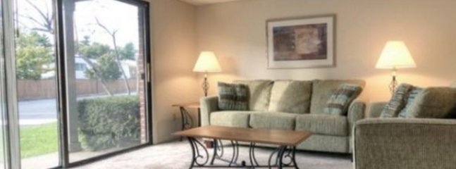 HIGH-TONED FURNISHED 2 BEDROOM, 1 BATHROOM APARTMENT, Marlborough