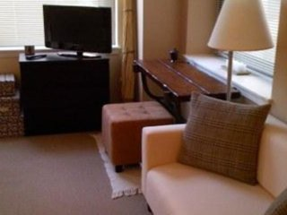 Furnished Studio Apartment at W Lake St & N Wells St Chicago