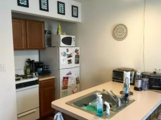Furnished 1-Bedroom Apartment at Beaconsfield Rd & Regent Cir Brookline
